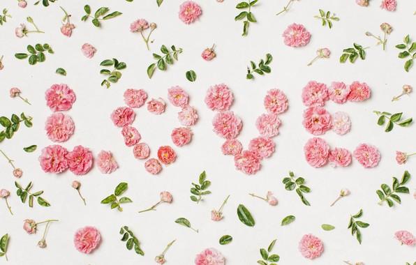 Picture love, flowers, heart, petals, love, heart, pink, flowers, beautiful, romantic, valentine, petals, floral