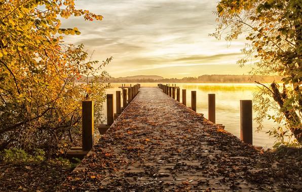 Picture autumn, bridge, nature, lake