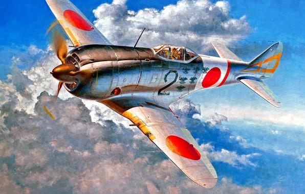 Picture fighter, Nakajima, Ki-44, WWII, Ki-44-II, Radial engine, IJAAF