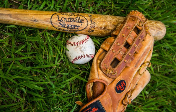 Picture photo, Grass, The ball, Sport, Gloves, Baseball bat
