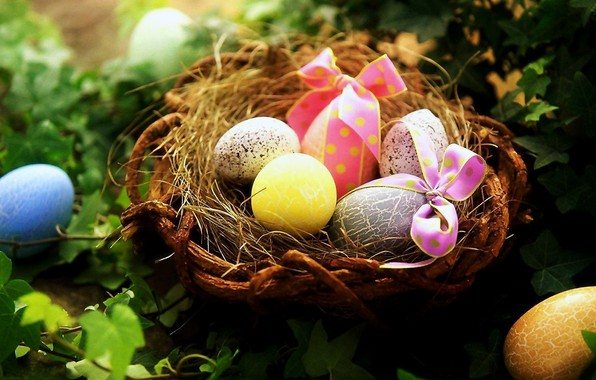 Picture macro, eggs, plants, Easter, socket, bows, painted eggs