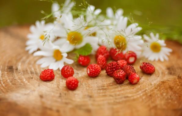 Photo wallpaper berries, chamomile, strawberries