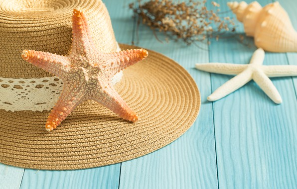 Picture beach, background, Board, star, shell, summer, beach, wood, marine, starfish, seashells