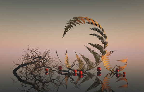 Picture leaves, branches, reflection, leaves, reflection, branches, Esther Margraff