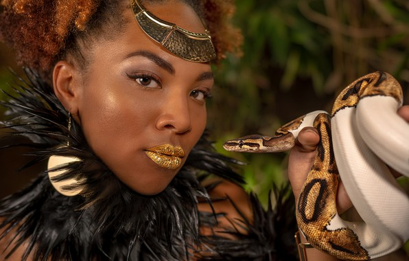 Picture look, girl, decoration, face, background, portrait, snake, earrings, feathers, makeup, hairstyle, African, gold plated, redhead, ...