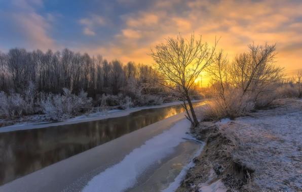 Picture ice, winter, the sky, trees, river, dawn, frost, Aleksei Malygin