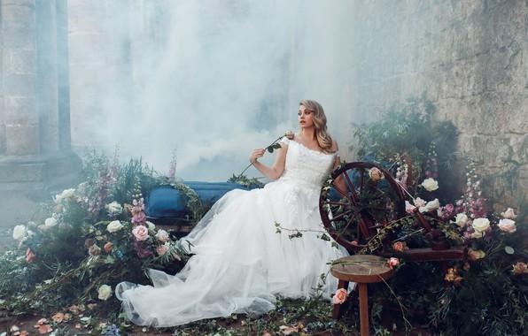 Picture girl, flowers, pose, dress, Bird Man, spinning wheel
