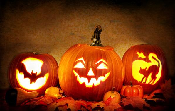 Picture leaves, light, candles, pumpkin, Halloween, 31 Oct