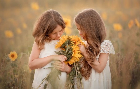 Picture summer, sunflowers, girls
