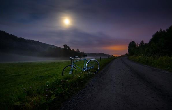Picture road, night, bike
