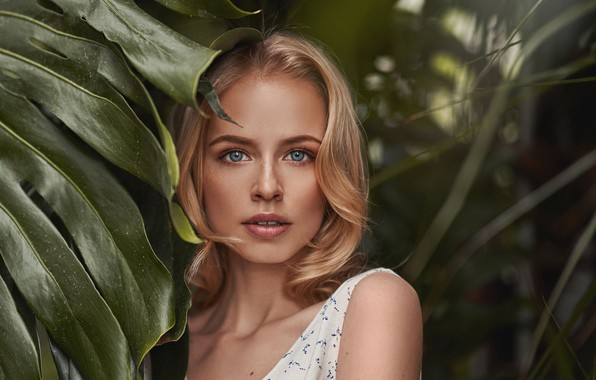 Picture look, leaves, girl, portrait, blonde