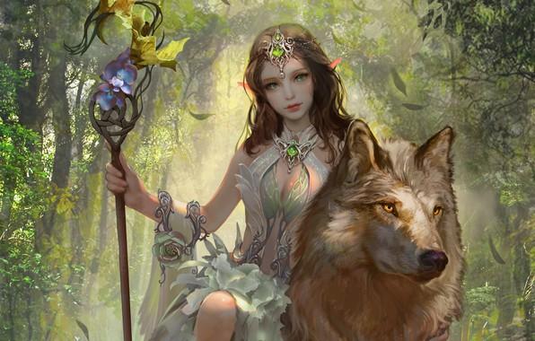 Picture look, girl, animal, wolf, fantasy, art, elf, sitting