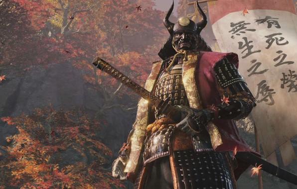 Picture Samurai, Shadows Die Twice, Sekiro