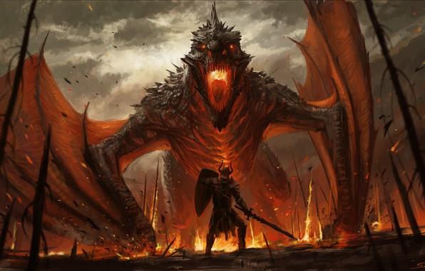 Picture Dragon, Fire, Monster, Warrior, Monster, Fantasy, Art, Fiction, Illustration, Wyvern Slayer, Stefan Koidl, by Stefan …
