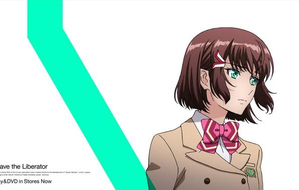 Picture face, white background, schoolgirl, bow, green eyes, bangs, kakumeiki valvrave, sashinami shouko