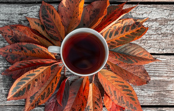 Picture photo, Autumn, Leaves, Board, Cup, Food, Tea