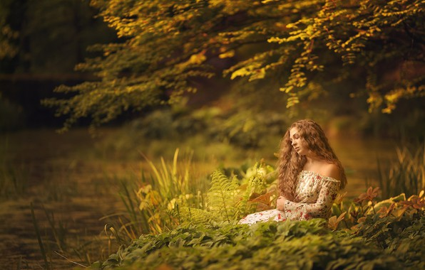 Picture forest, grass, trees, branches, pose, pond, model, portrait, makeup, dress, hairstyle, brown hair, sitting, nature, …