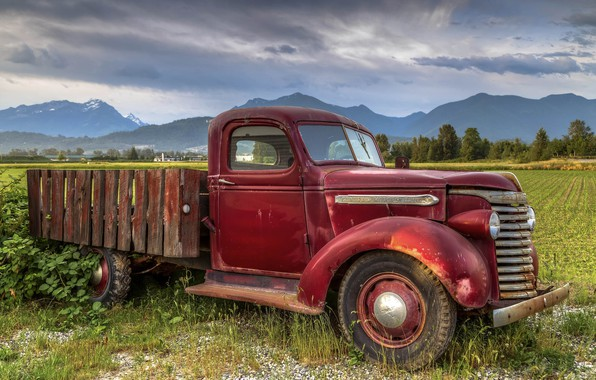 Picture rusty, truck, old