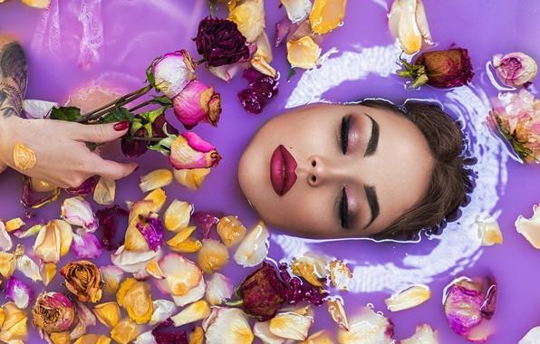 Picture water, girl, flowers, face, roses, makeup, petals, closed eyes, Sophia Oznobishina