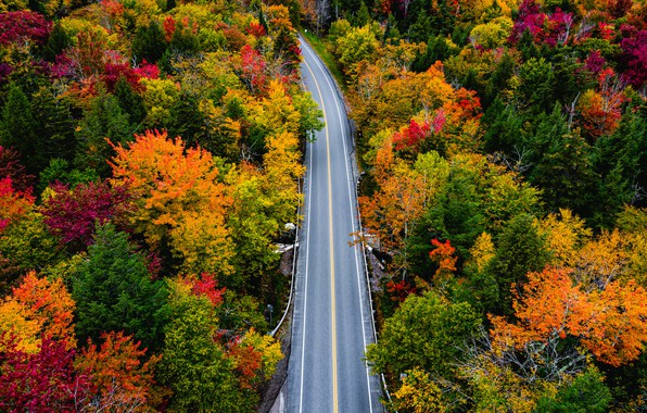Picture road, autumn, forest, trees, Vermont, Vermont, Smugglers Notch