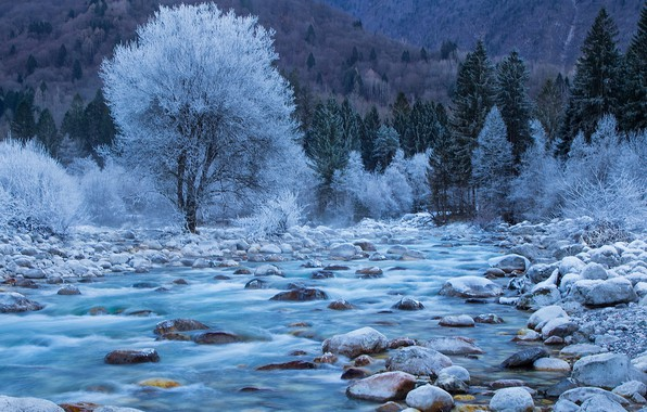 Picture forest, river, photography, trees, landscape, nature, water, winter, mountains, rocks, spring, Slovenia, long exposure, Soča …