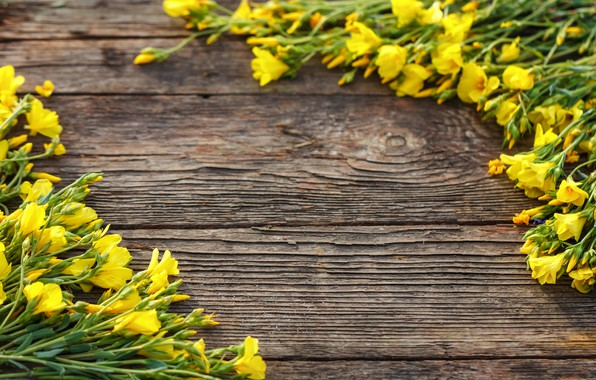 Picture flowers, Board, yellow, yellow, wood, blossom, flowers, spring