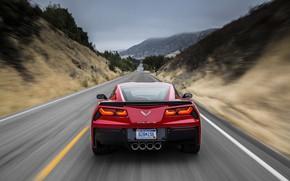Wallpaper Corvette, Chevrolet, Stingray, 2014