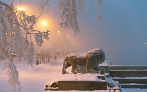 Picture winter, snow, branches, the city, Leo, the evening, Peter, lighting, lights, Saint Petersburg, sculpture, promenade, …