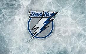 Picture logo, hockey, NHL, NHL, Tampa Bay Lightning, Tampa Bay Lightning, Амали-арена