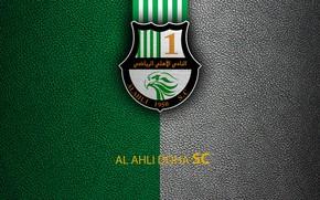 Picture wallpaper, sport, logo, football, Al-Ahli Doha