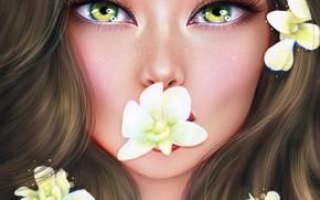 Picture eyes, look, girl, flowers, Ainash Kassenova