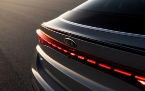 Picture sedan, KIA, Kia, feed, Optima, 2020, 2021, fastback, K5, K5 GT-Line AWD, Kia K5, KIΛ