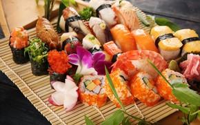 Picture fish, figure, sushi, cuts, Seth, sashimi