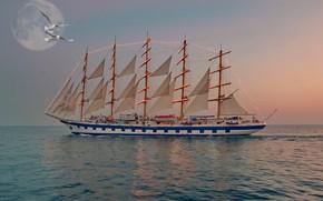 Picture the moon, seagulls, sailboat, the evening, illumination