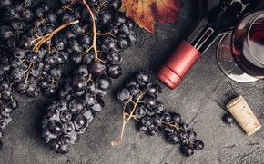 Picture glass, bottle, harvest, grapes, Wine, tube