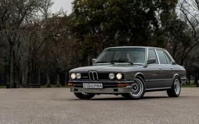 Picture BMW, ALPINA, E12, B7 TURBO