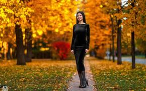 Picture autumn, look, leaves, trees, sexy, pose, smile, Park, model, portrait, makeup, figure, slim, dress, brunette, …
