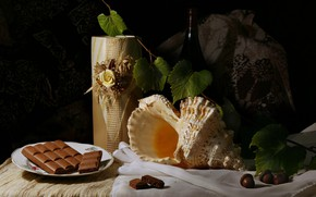 Picture the dark background, wine, bottle, chocolate, shell, fabric, vase, still life, items, acorns, composition, vine