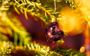 Picture winter, holiday, ball, ball, Christmas, New year, needles, Christmas decorations, Christmas decorations, новогодние декорации
