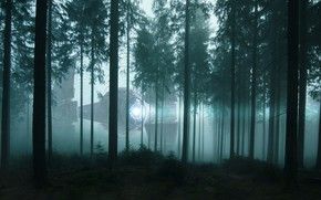 Picture forest, light, trees, night, fog, fiction, ship, UFO, morning, pine, twilight, spotlight, crown, spaceship, aliens, …