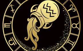 Picture pitcher, zodiac sign, Aquarius