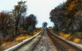 Picture autumn, nature, railroad
