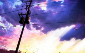 Picture the sky, birds, clouds, the city, power lines