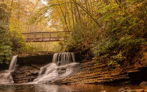 Picture autumn, forest, leaves, trees, bridge, Park, stream, stones, waterfall, USA, Virginia, Jefferson National Forest