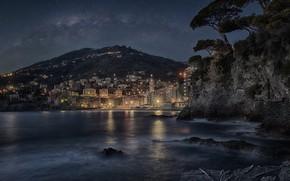 Picture night, the city, shore