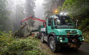 Wallpaper forest, Mercedes-Benz, truck, machinery, CMU, Unimog, U430