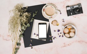 Picture flowers, coffee, the camera, Notepad, macaron