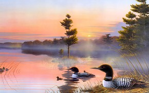Picture autumn, the sky, the sun, light, sunset, birds, nature, fog, lake, pond, reflection, river, pink, …