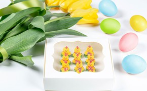Picture flowers, chickens, eggs, Easter, tulips, white background, eggs, yellow tulips