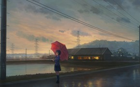 Picture posts, wire, home, the evening, Japan, Power lines, schoolgirl, waiting, pond, asphalt after the rain, …